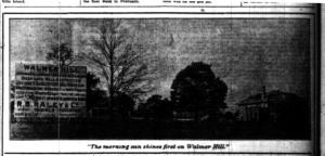 Walmer Hill ad Star Weekly brighter Jan 11 1913 crop